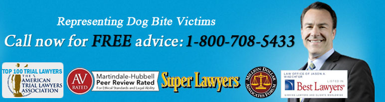Dog Bite Lawyer in Oklahoma  Hire the best dog bite attorny or firm