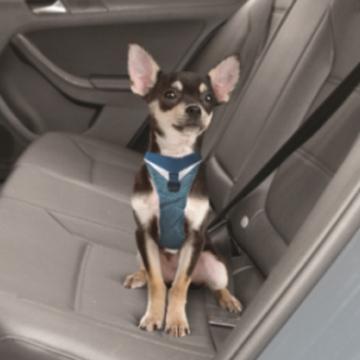 Kurgo Go Tech Adventure Safety Harness Furry Travelers Pet Supplies